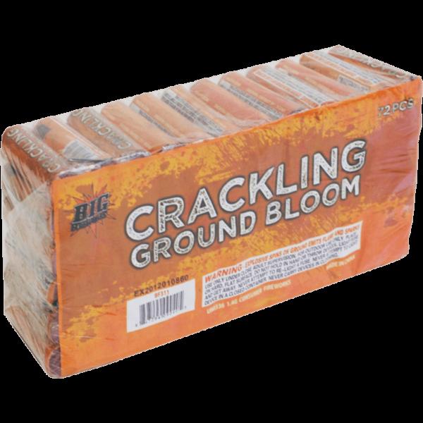 Crackling Ground Bloom 1